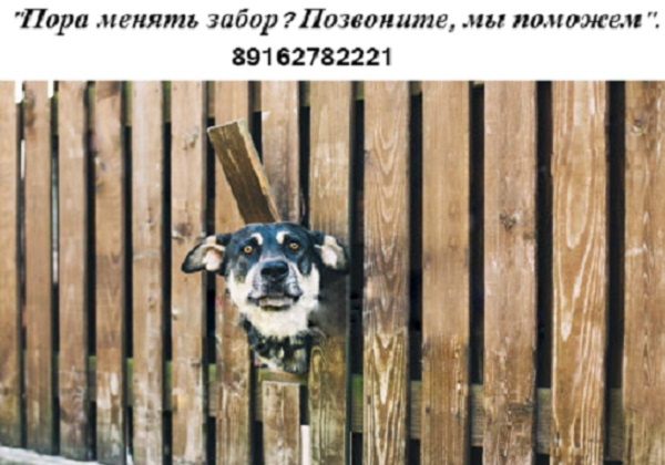 http://odwin.ru/wp-content/uploads/2017/04/sobaka.jpg